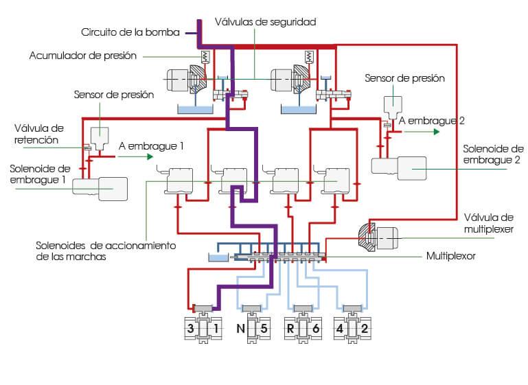 como funciona la dsg 6