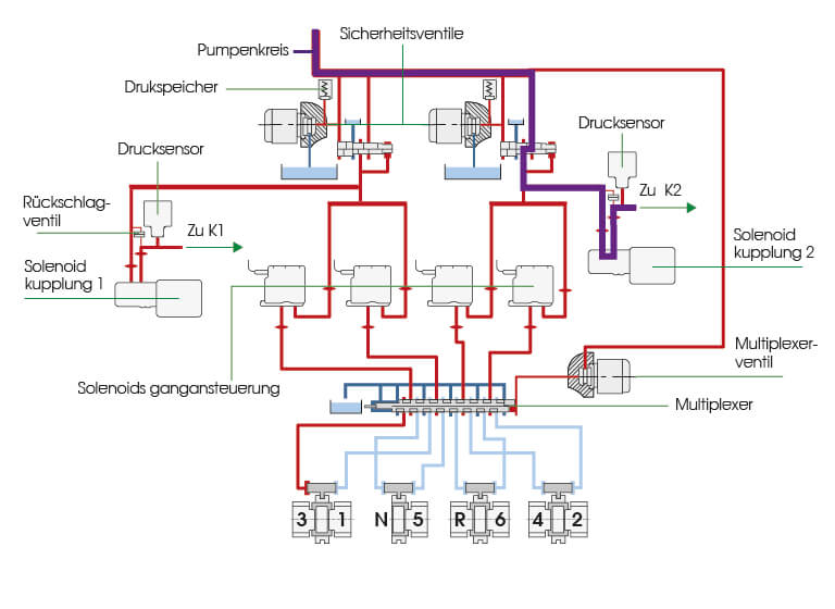 DSG-6 Erklarung